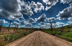 Después del paisaje del huracán Imagen de archivo