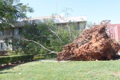 Después del tornado Imágenes de archivo libres de regalías