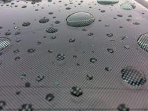 Despu?s de la lluvia foto de archivo libre de regalías