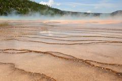 Dessa modeller bildas på Mammoth Hot Springs Royaltyfri Bild
