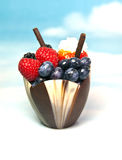 Dessert. Amazing fruit dessert placed with a cup made from chocolate Royalty Free Stock Photos