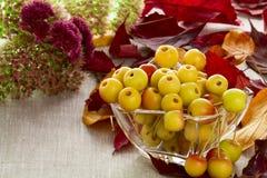 Dessert of autumn royalty free stock photography