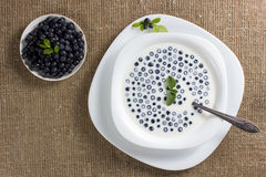 Dessert from a bilberry. Cold soup a dessert from a bilberry with milk Royalty Free Stock Photography