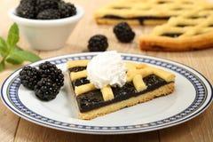 Dessert blackberry pie Royalty Free Stock Images