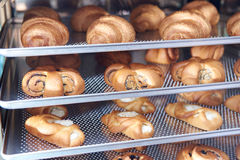 Dessert bread baking in Combi steamer. Production oven at the bakery. Baking bread. Manufacture of bread. Stock Images