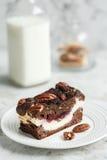 Dessert brownie-kaastaart met noten Royalty-vrije Stock Foto's