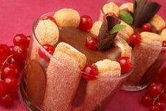 Dessert, charlotte of chocolate Stock Photography