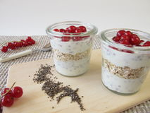 Dessert with chia pudding and currants Stock Image