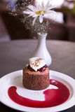 Dessert with chocolate sponge cake, cherry and vanilla ice cream Royalty Free Stock Images