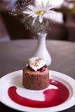 Dessert with chocolate sponge cake, cherry and vanilla ice cream Royalty Free Stock Images