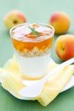 Dessert con l'albicocca fotografia stock
