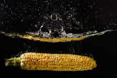 Dessert corn falling into the water with a splash Royalty Free Stock Images