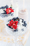 Dessert of cottage cheese Stock Photography