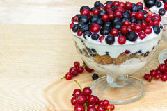 Dessert with cream and fresh berries (red and black currants, blueberry) Stock Photography