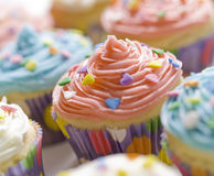 Dessert cupcake Royalty Free Stock Photos