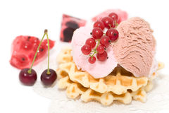 Dessert of currant, ise-cream, cherry and waffles Royalty Free Stock Photos