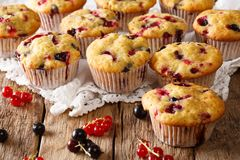 Dessert d'été : petits pains avec une préparation de baie des groseilles en gros plan H Photo stock