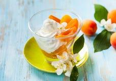 Dessert d'abricot photographie stock libre de droits