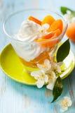 Dessert d'abricot images libres de droits