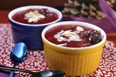 Dessert danese della gelatina della bacca (flode del med di Rodgrod) immagini stock