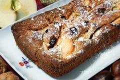 Dessert dat met appelen en rozijnen wordt gemaakt Royalty-vrije Stock Afbeelding
