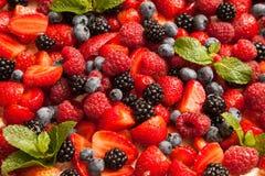 Dessert de baies Photo libre de droits