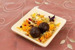 Dessert de chocolat Photo stock
