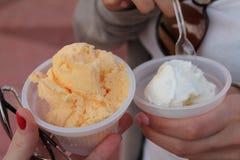 Dessert de crème glacée  Photographie stock libre de droits