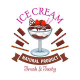 Dessert de crème glacée avec le symbole de chocolat et de fruit Photo stock