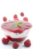 Dessert de fruit avec du yaourt Photos libres de droits
