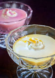 Dessert de gélatine crémeux d'agrume Photographie stock libre de droits