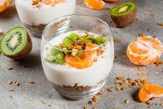 Dessert de granola de yaourt de mandarine et de kiwi photos libres de droits