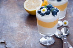 Dessert de myrtille de citron Photo stock