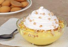 Dessert de pudding de citron Photographie stock libre de droits
