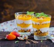 Dessert de yaourt Photos libres de droits