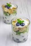 Dessert de yaourt avec la myrtille, le kiwi et les céréales photo libre de droits