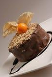 Dessert del cioccolato con frutta Fotografie Stock Libere da Diritti