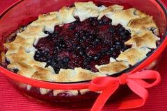 Dessert del grafico a torta della frutta fresca Immagini Stock