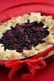 Dessert del grafico a torta della frutta fresca Immagine Stock