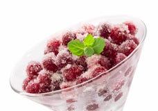 Dessert del mirtillo rosso isilated fotografia stock