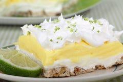Dessert del pudding della calce del limone immagine stock libera da diritti