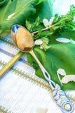 Dessert del rabarbaro con la menta Fotografia Stock Libera da Diritti