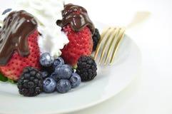 Dessert della frutta Immagine Stock