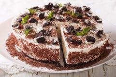 Dessert della torta di formaggio con i bei pezzi dei clo dei biscotti e della menta del cioccolato Fotografia Stock Libera da Diritti