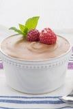 Dessert di stile di dieta di Paleo Fotografia Stock