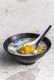 Dessert doux thaïlandais, boulettes de riz en lait de noix de coco Image libre de droits