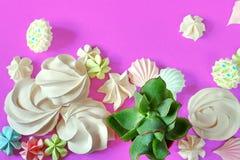 Dessert et succulents minimaux de meringue d'été de configuration plate sur le poinçon Images stock