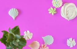 Dessert et succulents minimaux de meringue d'été de configuration plate sur le poinçon Photos libres de droits