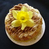 Dessert and flower. Wonderful, fatty, unhealthy cake with daffodil decoration on it stock photos