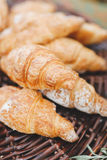 Dessert French Croissant. Tasty and fresh french croissant for coffee or tea Royalty Free Stock Photos